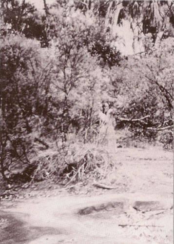Un fantôme australien (1959)