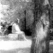 Le cimetière de Bachelor(1991)